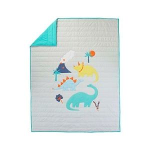 Discontinued Crate & Barrel Kids Twin Quilt Blanke